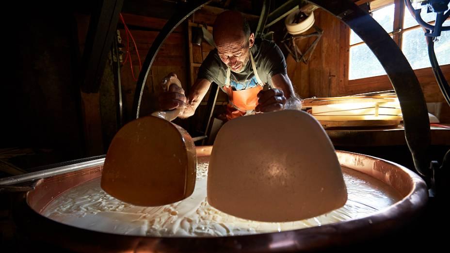 A coalhada é dividida em grãos durante a fabricação do queijo