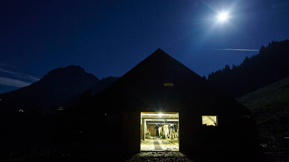 Vacas sendo ordenhadas em um chalé durante uma manhã de lua cheia na montanha La Proveta