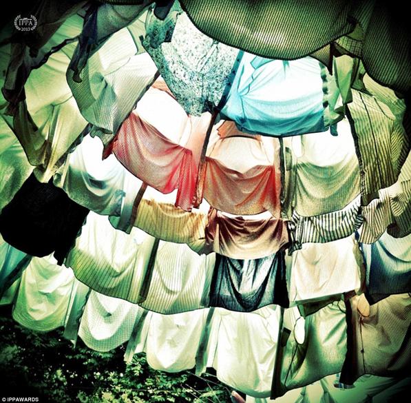 Fotografia de Daniel Fonseca - Vencedora na categoria: Natureza Morta (Still Life)