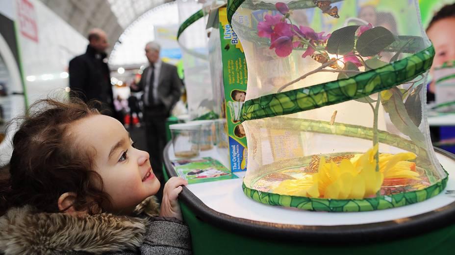 Garota de 3 anos olha para estande com borboletas durante a feira anual de brinquedos de Londres