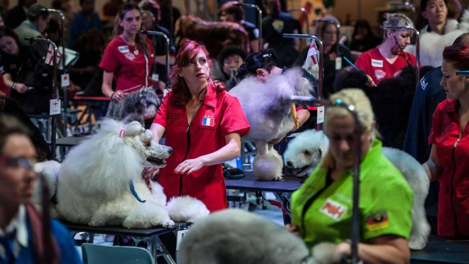 Participantes com seus animais de estimação durante o Dog World Team Championships Grooming, em Barcelona, na Espanha