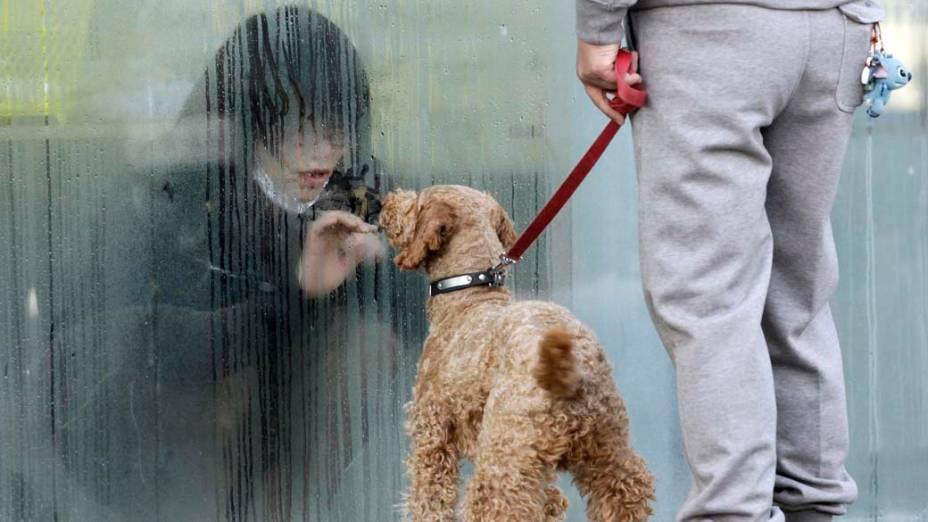 Garota isolada, por causa da radiação, com seu cachorro na cidade de Nihonmatsu, Japão