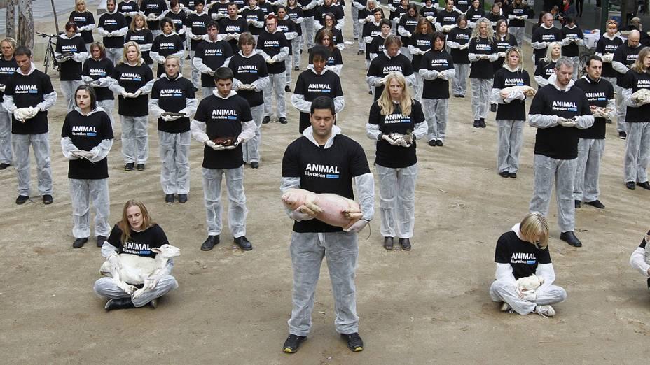 Grupo protesta com animais mortos na cidade de Melbourne, cem corpos de animais foram exibidos em manifestação com o objetivo de chamar atenção para o sofrimento dos animais na sociedade
