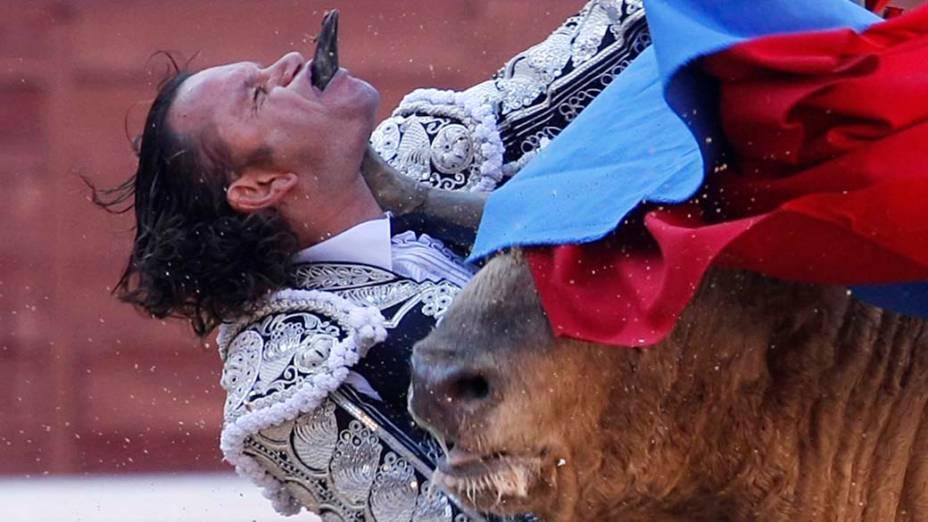 Toureiro é atingido durante tourada em Madri, em maio