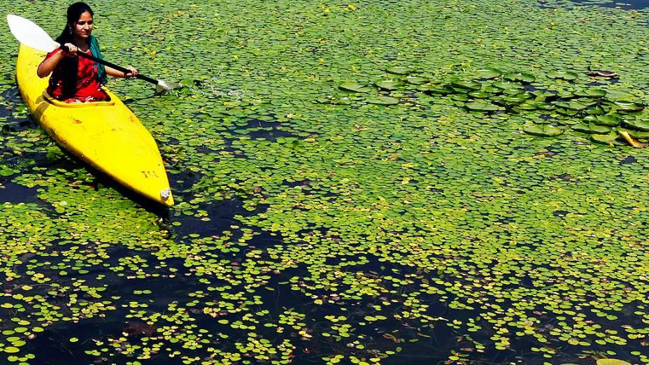 Jovem rema caiaque em lago coberto por plantas aquáticas em Srinagar, na Índia