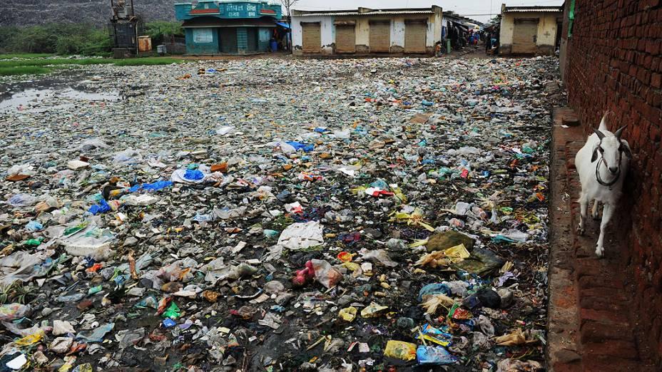 Lixo acumulado em Rabia Nagar, na cidade indiana de Ahmedabad. As fortes chuvas de monção castigaram a cidade e criaram dificuldades para os moradores