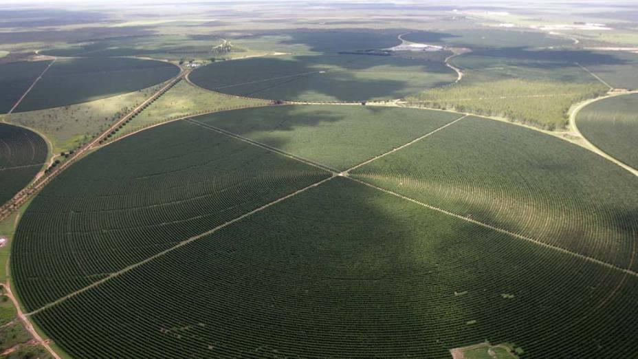 Vista aérea da região agrária da cidade de Luis Eduardo Magalhães, Bahia