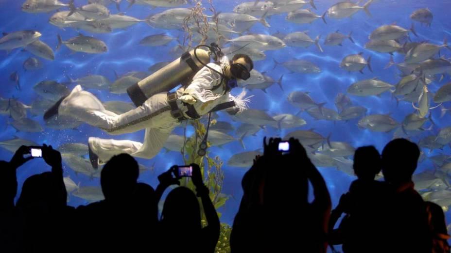 Mergulhador vestido de Elvis Presley durante apresentação em aquário no Ocean Park, em Manila, Filipinas