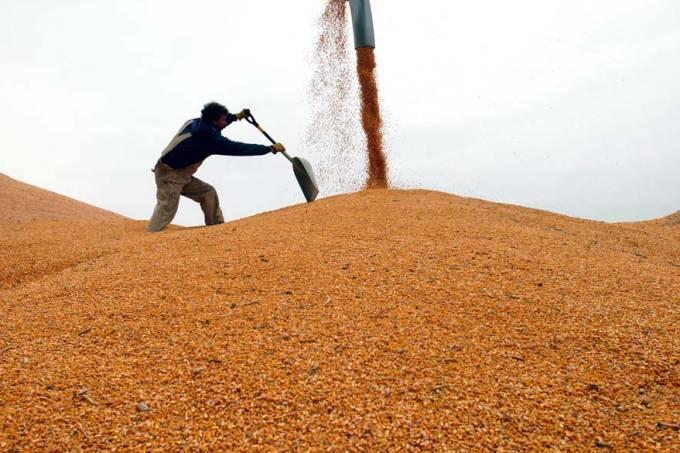 milho-colheita-agricultura-commodities-estados-unidos-20051031-original.jpeg