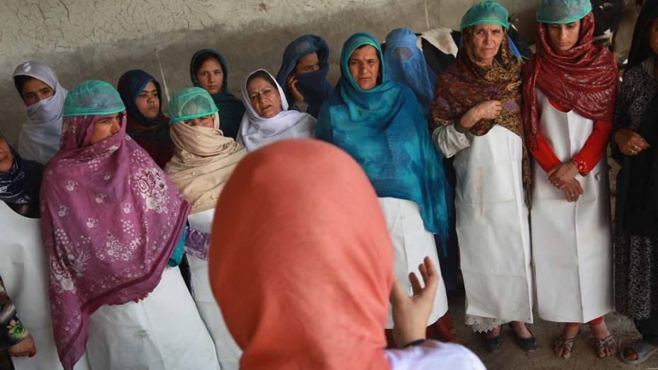 Em Cabul, afegãs durante aula sobre criação animal, parte de um programa que visa educar as mulheres sobre formas de aumentar a renda familiar