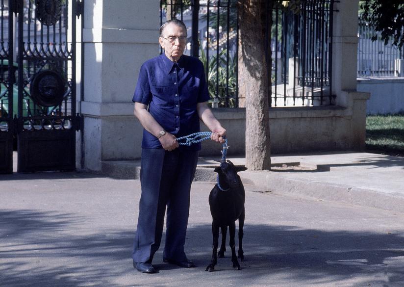 Nelson Rodrigues com um cabrito nos anos 80