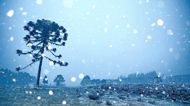 Neve na cidade de São José dos Ausentes, na serra gaúcha