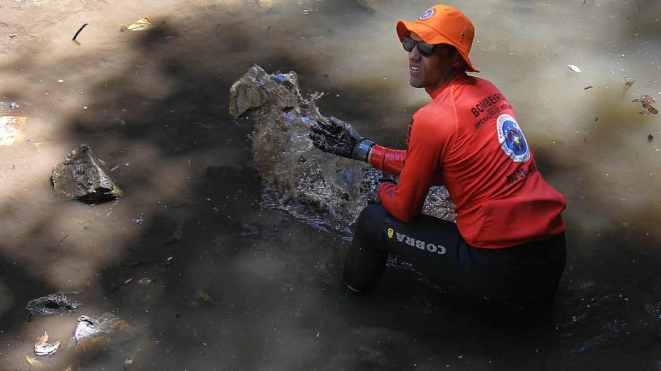 Novo depoimento levou bombeiros e Polícia Civil a fazer novas buscas pelo corpo de Amarildo na Rocinha