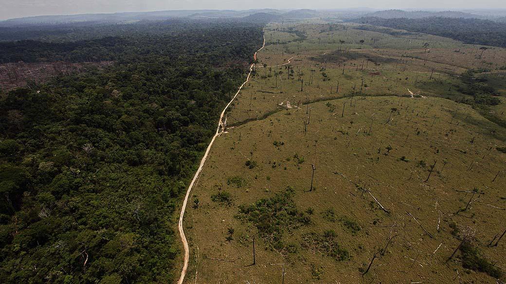 Amazônia: somente 4% das unidades de conservação estão devidamente instaladas