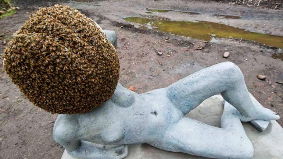 """Escultura de Pierre Huyghe com milhares de abelhas vivas na exposição """"dOCUMENTA (13)"""" em Kassel, Alemanha"""