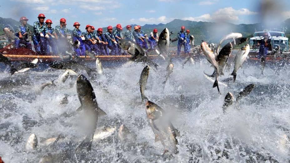 Pescadores no lago Qiandao, no leste da China