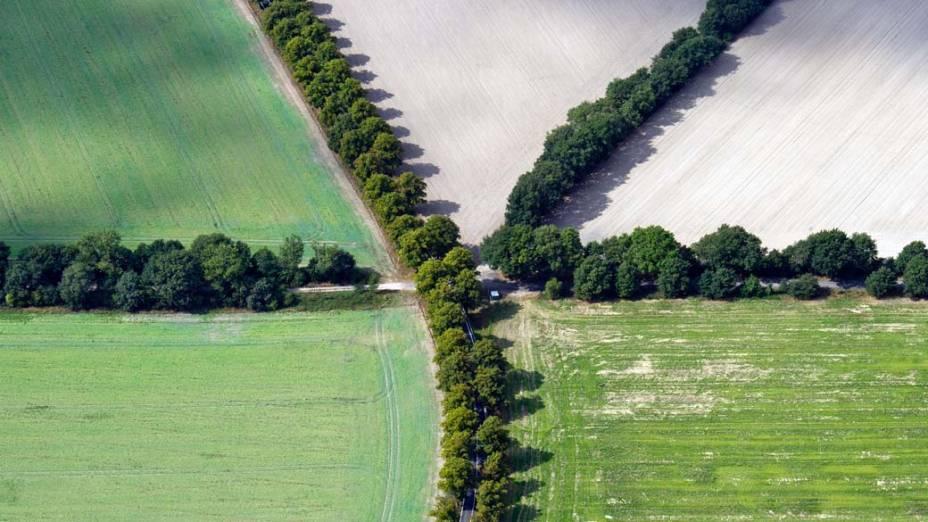 Vista aérea mostra arbustos em estradas de Brandemburgo, na Alemanha
