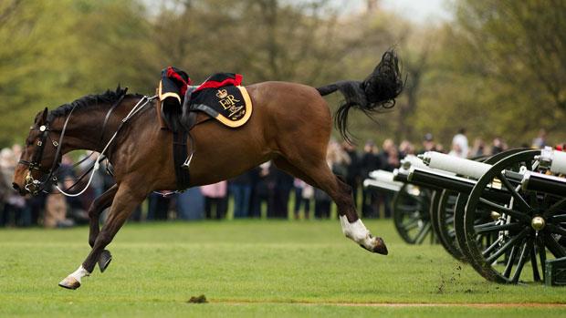 Cavalo se assusta com disparos da artilharia real durante comemoração do 86º aniversário da rainha Elizabeth, no Hyde Park, em Londres