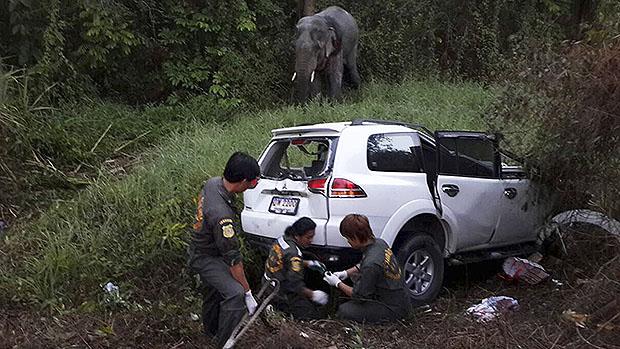 Seis pessoas morrerram após um veículo colidir com um elefante, na Tailândia