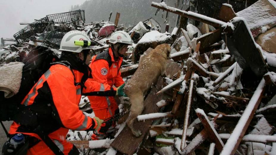 Equipe de resgate da Suíça em Minamisanriku, Japão
