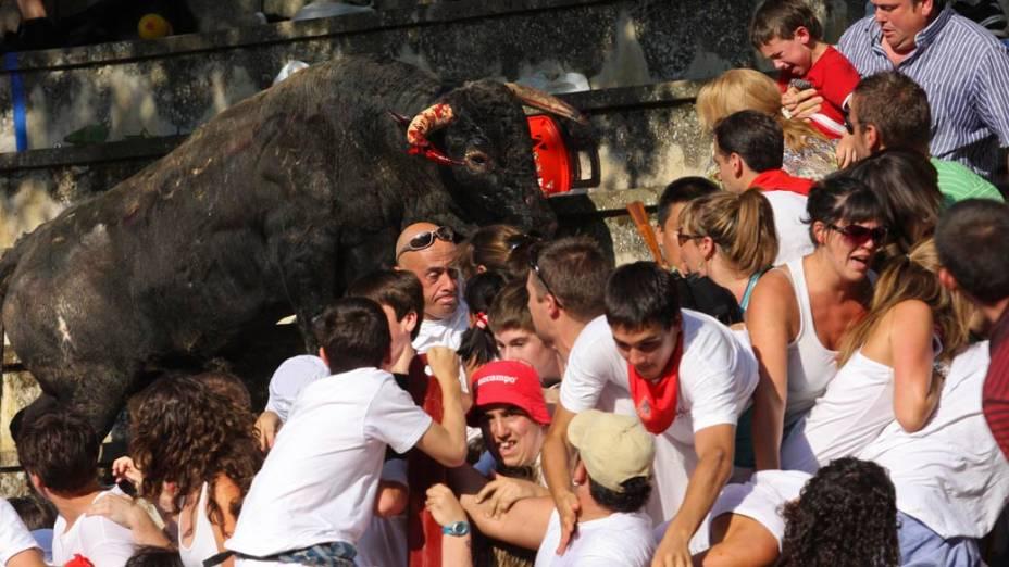 Em Tafalla, no norte da Espanha, um touro saltou nas arquibancadas durante tourada e feriu cerca de 40 pessoas que assistiam ao espetáculo (foto realizada nesta quarta-feira e disponibilizada hoje)