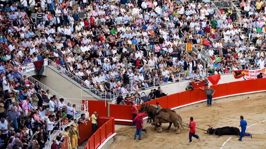 Touro morto é arrastado para fora da arena depois de ser abatido pelo toureiro José Tomás durante a última tourada na praça de touros Monumental em Barcelona, Espanha