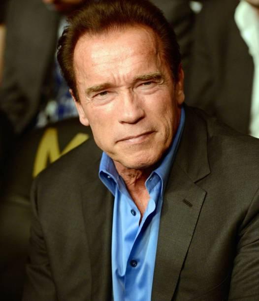 UFC 167: o ator e ex-governador Arnold Schwarzenegger