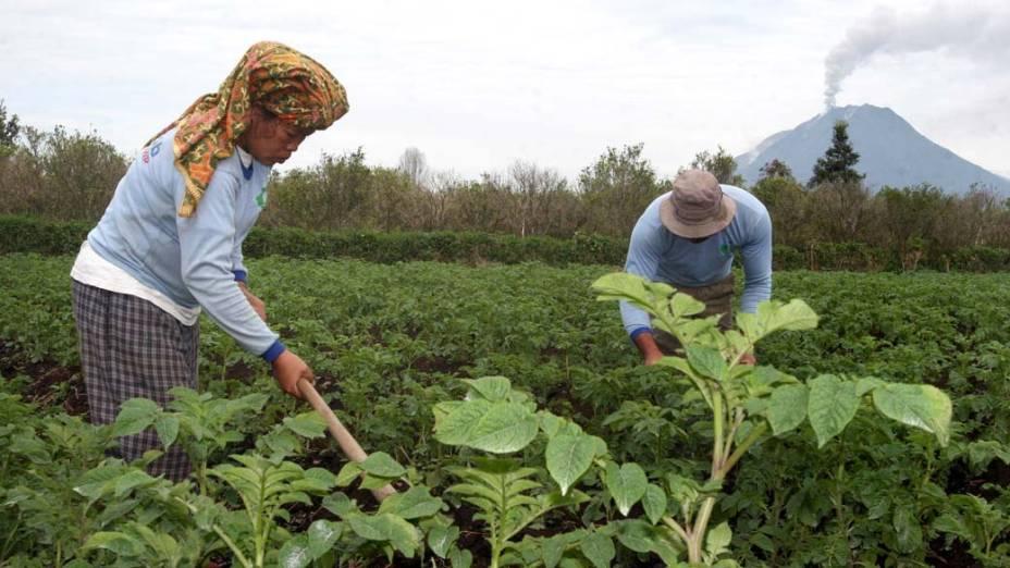 Camponeses em Tanah Karoh, vilarejo próximo ao vulcão