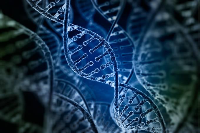 DNA – Genética