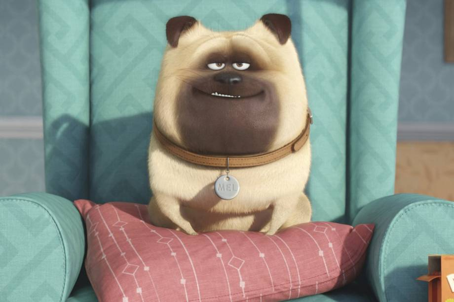 Mel é interpretado por Bobby Moynihan, na animação Pets - A vida secreta dos animais