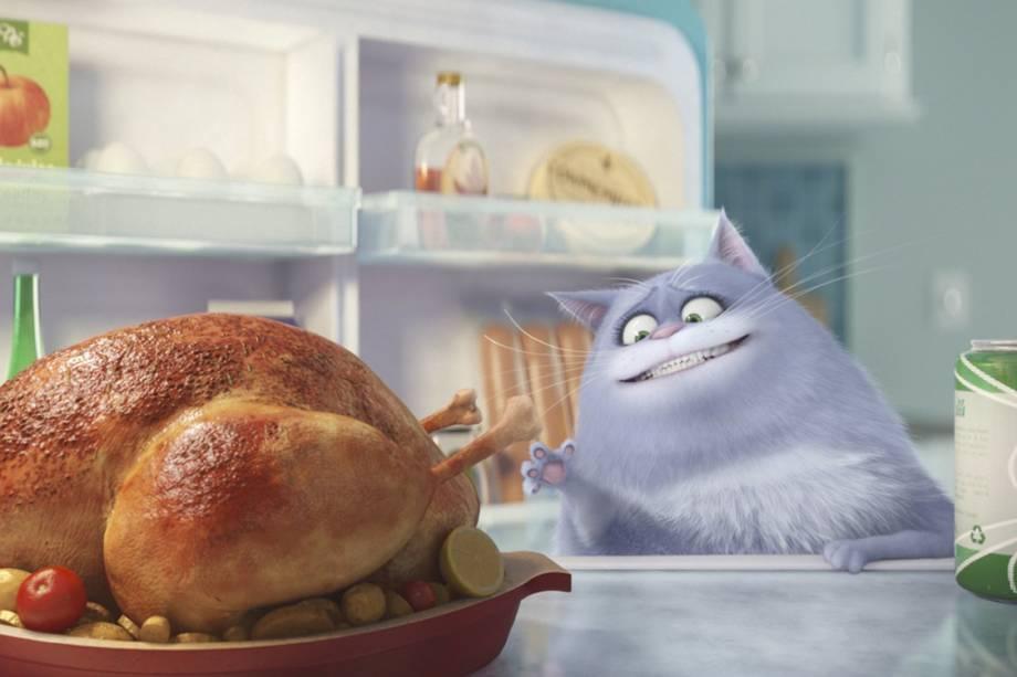 Chloe (Lake Bell) é uma gatinha em Pets - A vida secreta dos animais