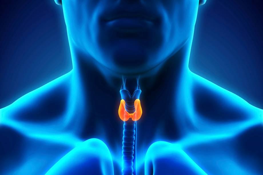 Glândula da Tireoide
