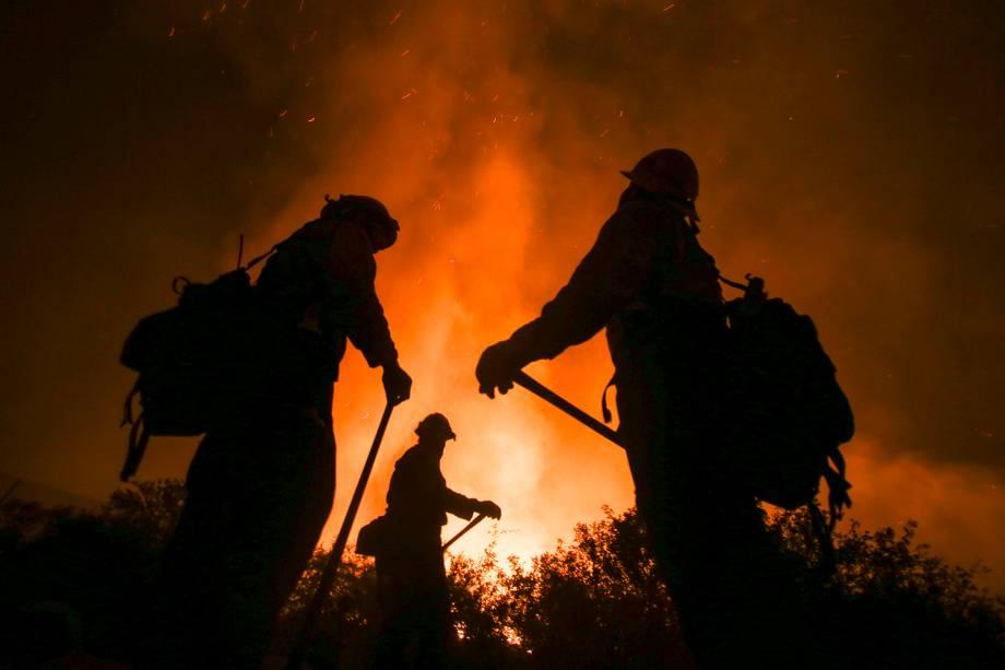 Bombeiros combatem incêndio florestal em São Bernardino, no estado americano da Califórnia - 17/08/2016