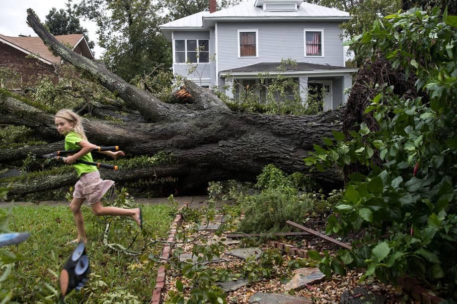 A árvore derrubada após passagem do furacão Matthew  em Savannah, no estado americano da Georgia - 08/10/2016