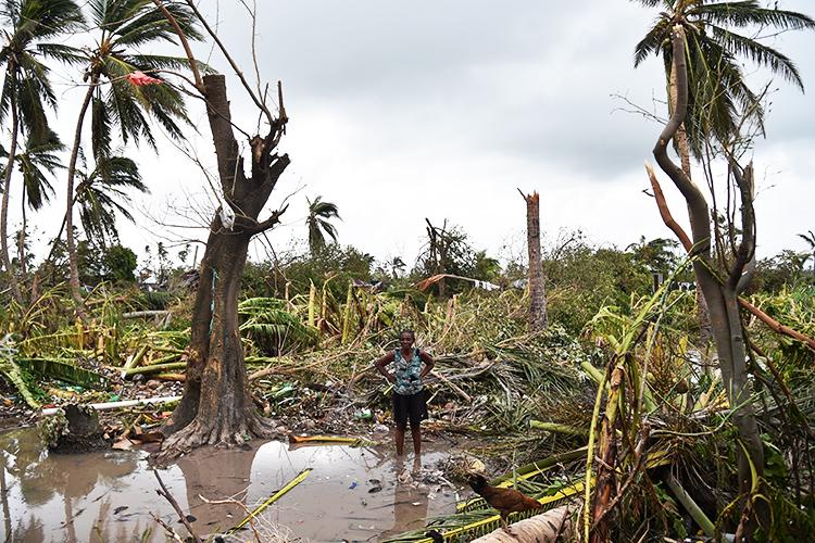 Mulher observa floresta destruída pelo furacão Matthew em Les Cayes, no Haiti - 06/10/2016