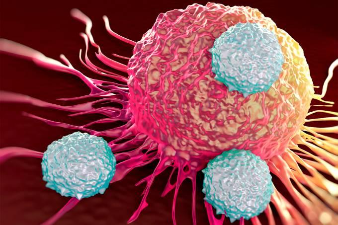 Saúde – Ataque de células cancerígenas