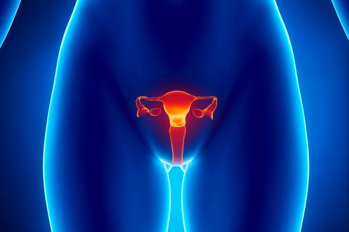 Saúde – Aparelho reprodutor feminino