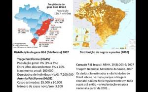 Anemia quadro Brasil