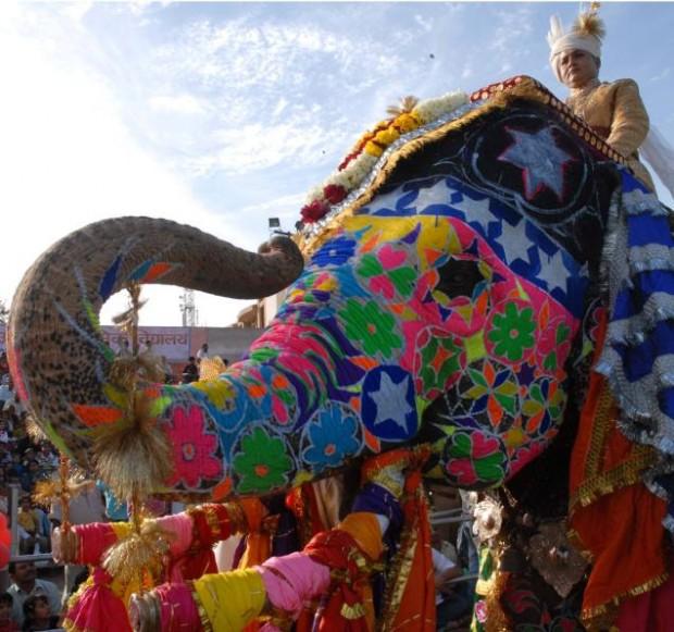 Elefante pintado em festival indiano: lembrança do que as cidades inteligentes não podem se transformar