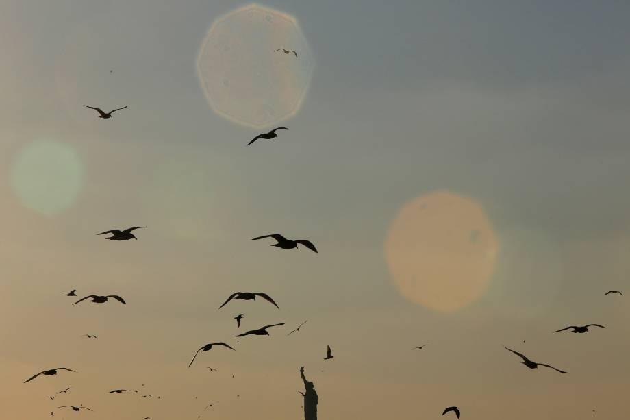 Pássaros voam sobre a Estátua da Liberdade em Nova York - 17/11/2016