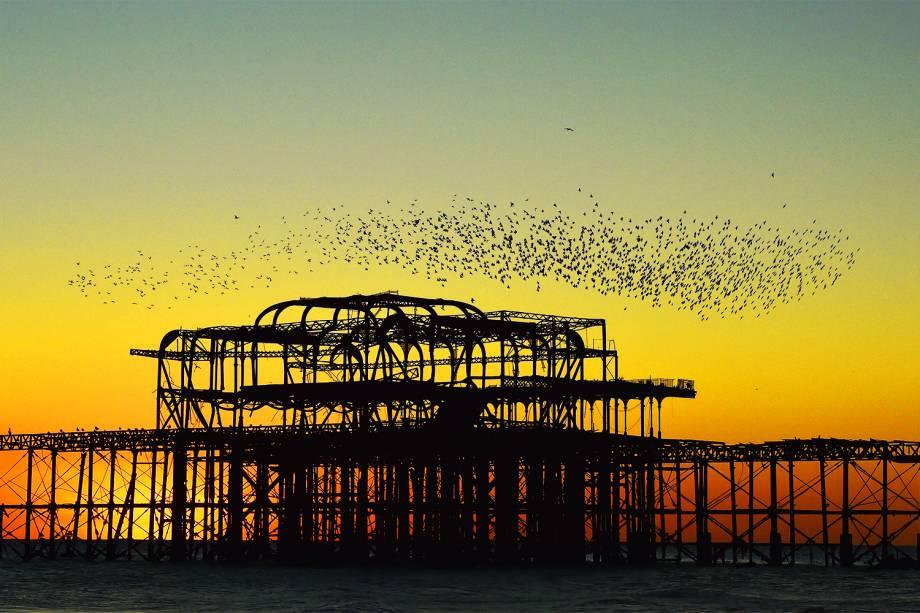 Estorninhos são vistos próximos a um píer, na Praia de Brighton, na Inglaterra, durante por do sol - 28/11/2016
