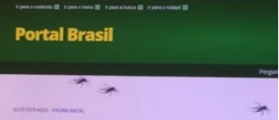 Mosquitoa de Dilma