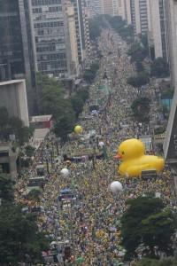 Paulista pato aereo