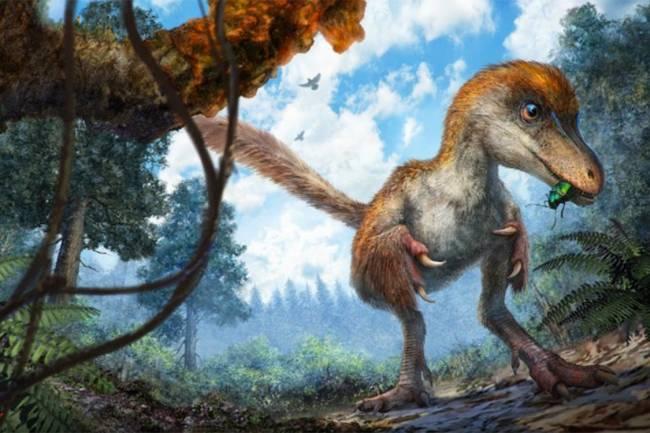 Dinossauro seria do tamanho de um pardal