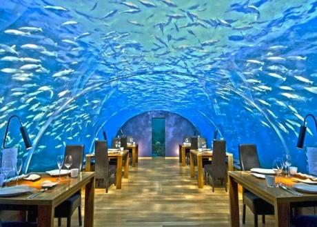 Ithaa Undersea Restaurant (Rangali Island, Maldivas)