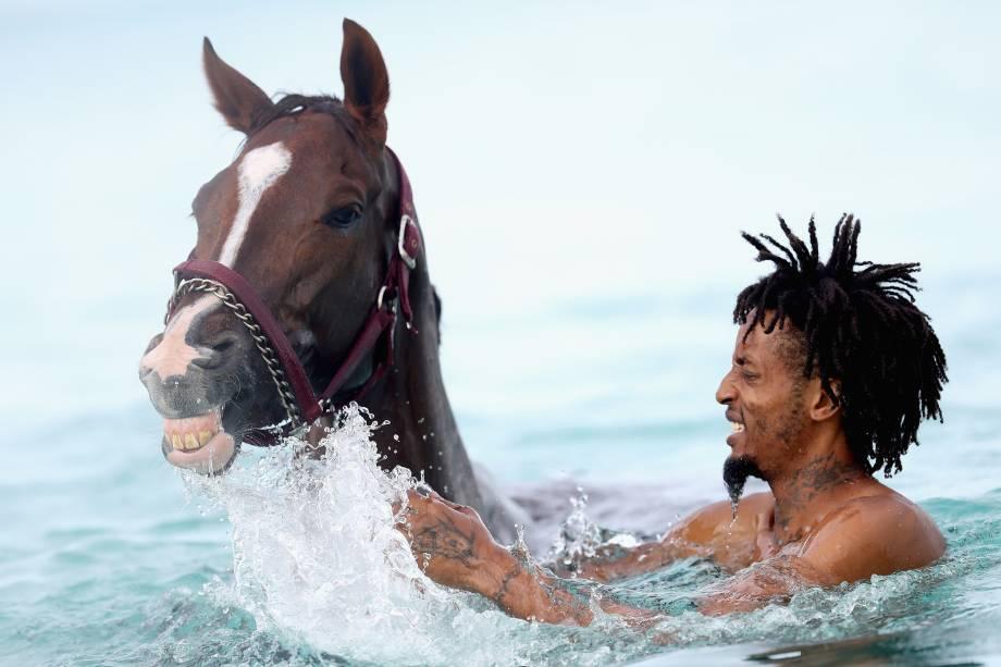 Homem dá banho em cavalos em preparação para o festival de comemoração de 50 anos de independência dos Barbados - 01/12/2016