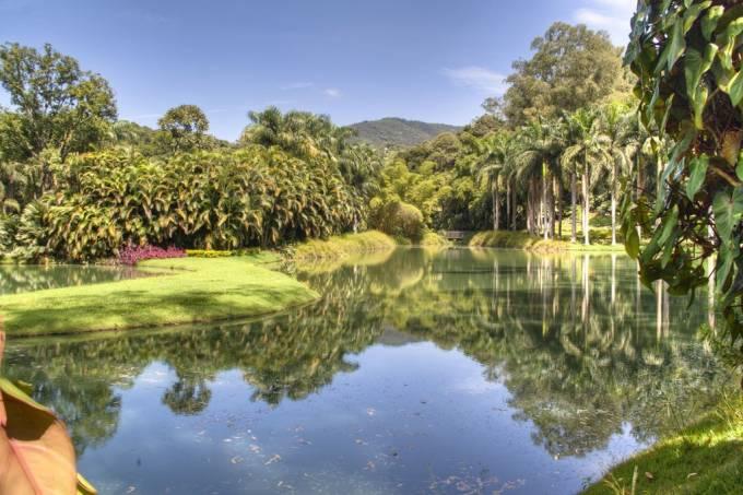 Um dos lagos em Inhotim