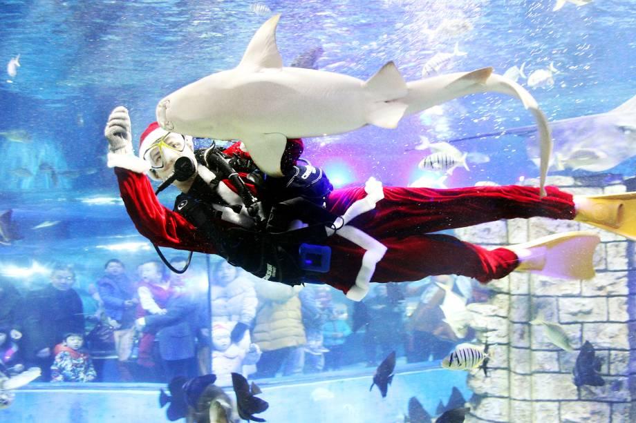 Um mergulhador vestido de Papai Noel alimenta animais de um aquário em Suzhou, na província chinesa de Jiangsu - 24/12/2016