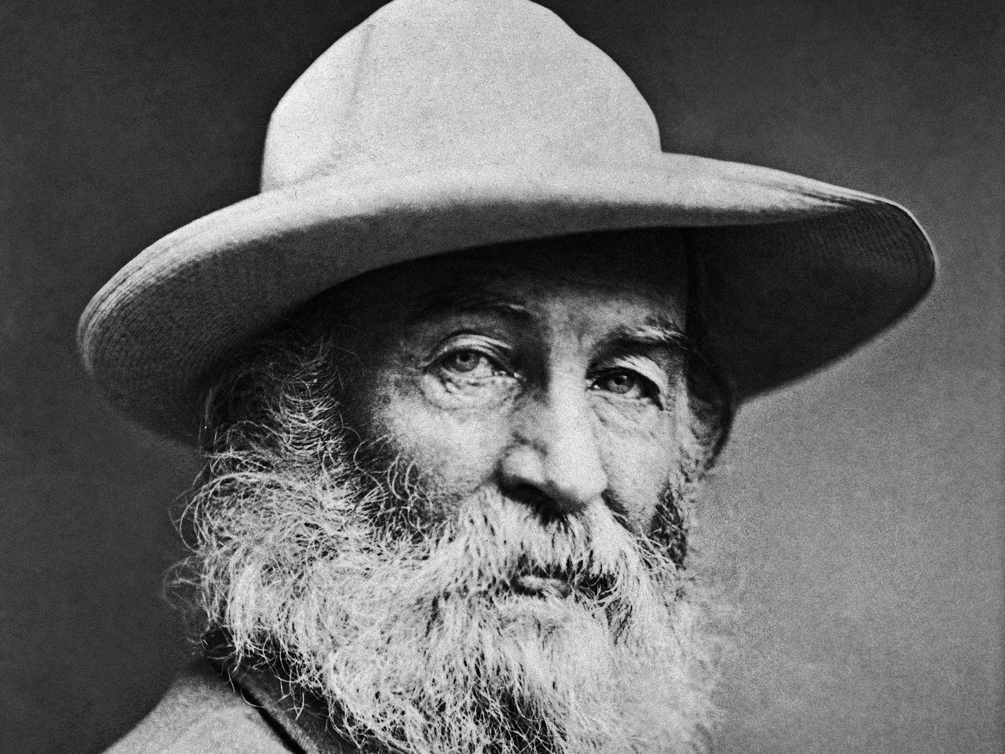 Retrato do poeta  Walt Whitman, 1870. (Crédito: Underwood Archives/Getty Images)