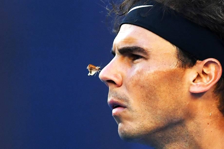 Uma mariposa é fotografada no nariz do espanhol Rafael Nadal em partida de quarta de final do Aberto da Austrália, em Melbourne - 25/01/2017